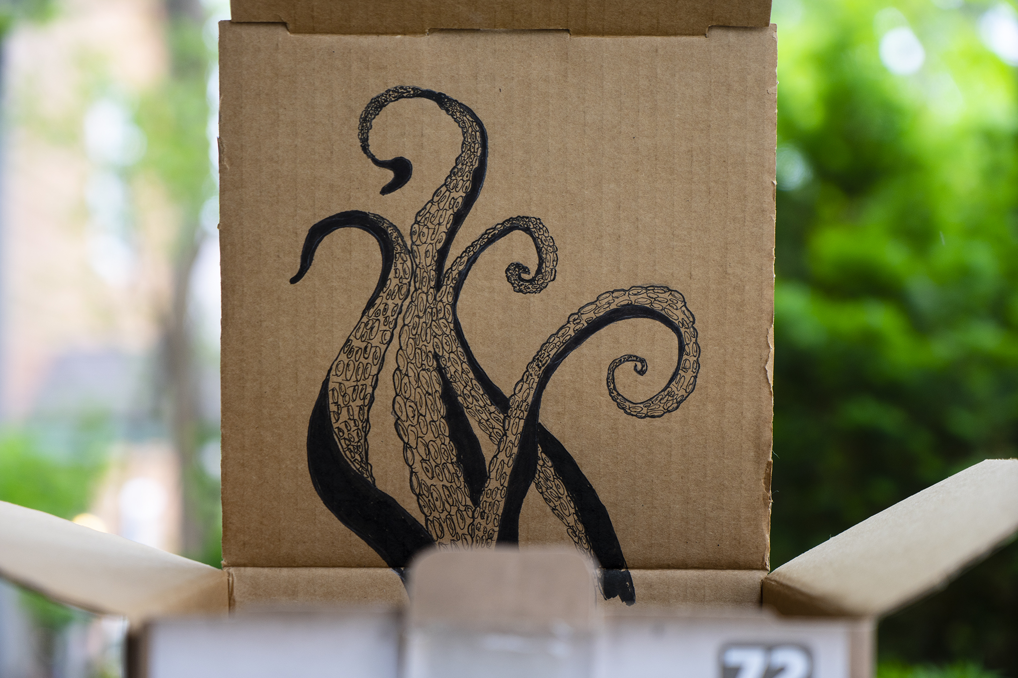octopus tentacles on a box