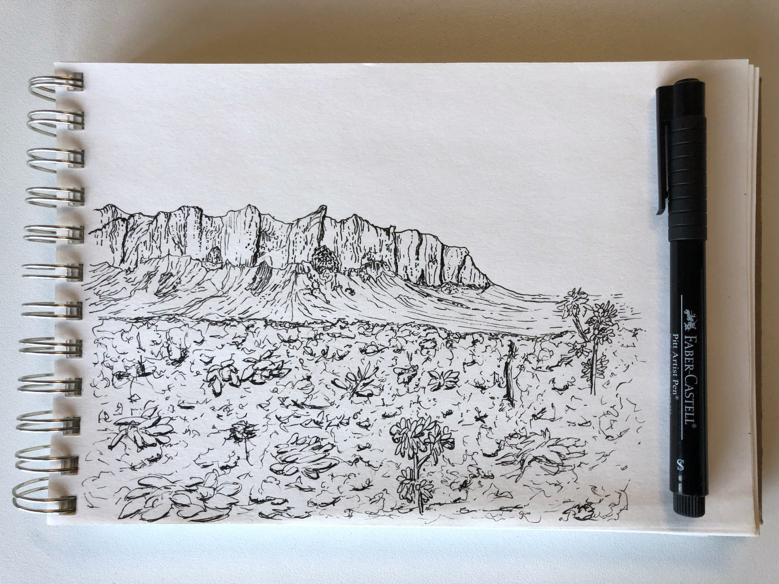 pen and ink drawing of the desert